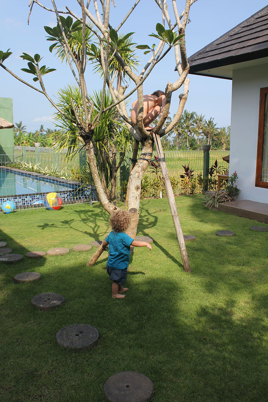 Climbing the Frangipani tree - in the nude!