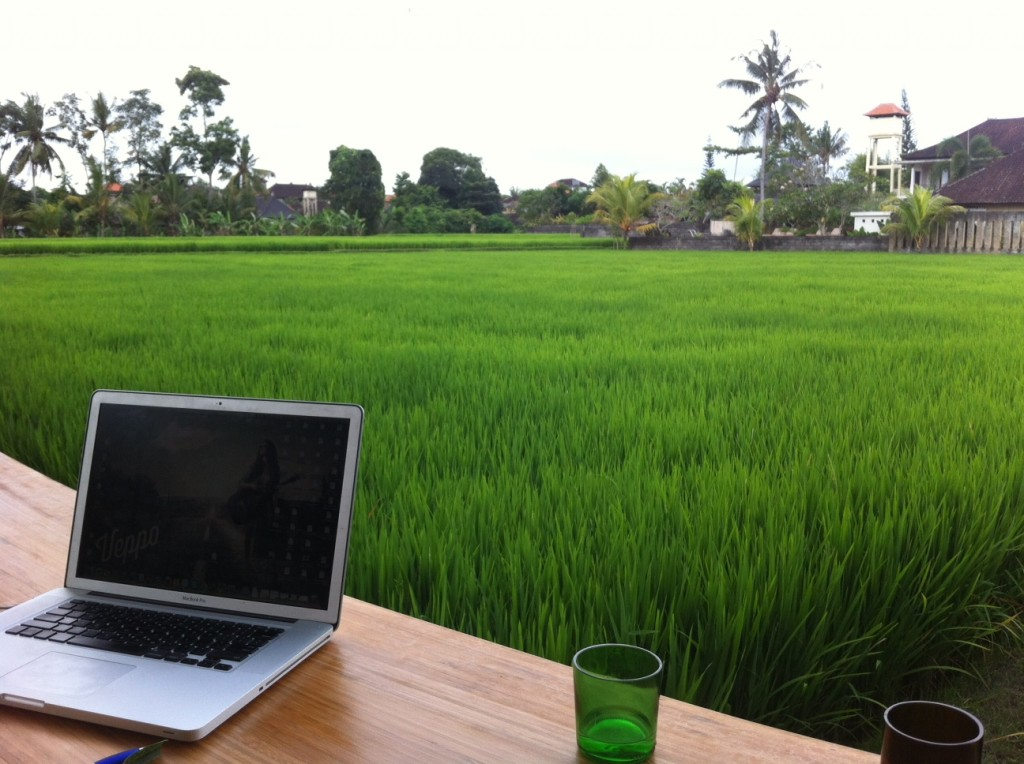 Beauitful Ricefield views from my desk right next to The Living food lab which specialises in amazing Raw Food!