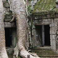 Siem Reap – Temples, Ruins and Running Wild