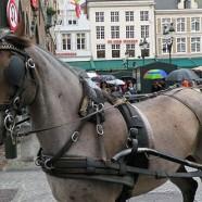 Return to Beautiful Bruges