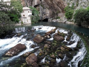 Buna-River-natural-spring