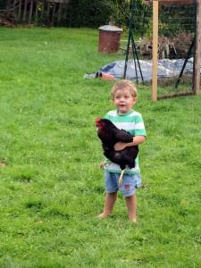 I caught a chicken!